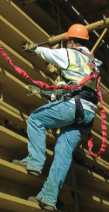 fall protection 3